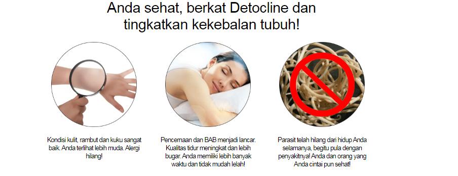 detocline id 1